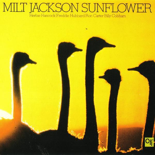 6_Sunflowers
